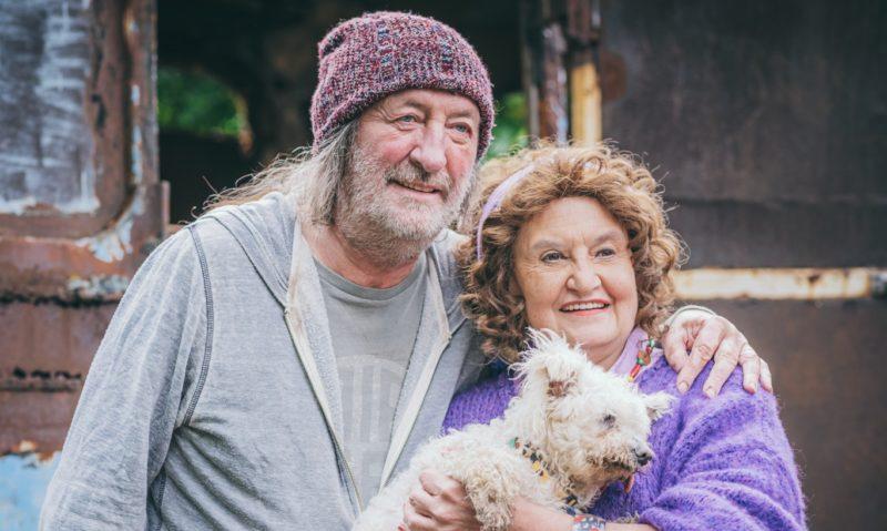 """""""Psí"""" rodinný film Gump – pes, který naučil lidi žít s tržbami 6 milionů"""